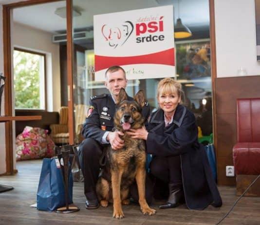 собаки рятівники